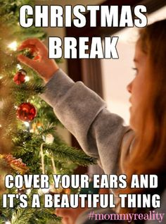 Yep, this about sums up Christmas break with my children!