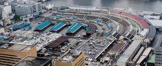 Dag 15. De Tsukiji vismarkt is wereldberoemd en waarschijnlijk de grootste markt voor vis ter wereld. Wees er vroeg bij want de veiling van tonijn begint om 05:20.