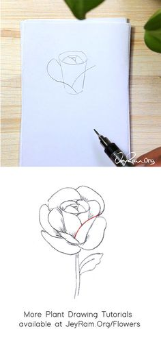 How to Draw a Rose : Step by Step for Beginners — JeyRam Art Roses Drawing Tutorial, Flower Drawing Tutorials, Rose Tutorial, Leaf Drawing, Floral Drawing, Flower Step By Step, Step By Step Drawing, Drawing For Beginners, Beginner Drawing