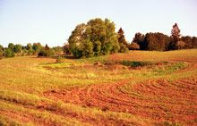 Latvijas dabas pieminekļi - citi pieminekļi - Velna pēdas