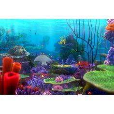 aquarium background paper