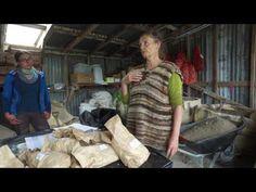 2016-17 Koanga Potato Trial Planting - YouTube