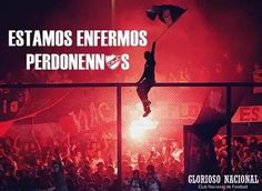 ESTAMOS LOCOS #SoyBolso Grande, Concert, Movies, Movie Posters, Biomes, Amor, Uruguay, Club Nacional De Football, Football Pictures