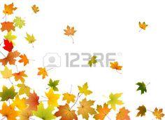 herbst blätter: Ahorn Herbst fallende Blätter, Vektor-Illustration.