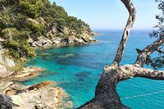 5 Frankreich Südfrankreich Côte d'Azur Meer