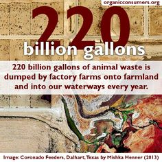 Today, nearly 65 billion animals worldwide, including cows, chickens and pigs, are crammed into Factory Farms and slaughtered annually. These animals are literally imprisoned and tortured in unhealthy, unsanitary and unconscionably cruel conditions.   Learn more about the impact of factory farms here: http://www.organicconsumers.org/articles/article_28336.cfm