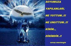 @turkcuinci