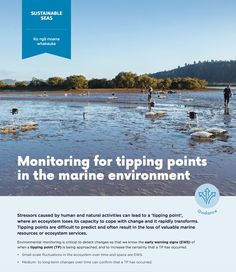 Stressors caused by human and natural activities can lead to a 'tipping point', where an ecosystem loses its capacity to cope with change and it rapidly transforms. Tipping points are difficult to predict and often result in the loss of valuable marine resources or ecosystem services. Environmental monitoring is critical to detect changes so that we know the early warning signs (EWS) of when a tipping point (TP) is being approached, and to increase the certainty that a TP has occurred... Marine Environment, Warning Signs, Marines, Sustainability, Challenges, Science, Change, Activities, World