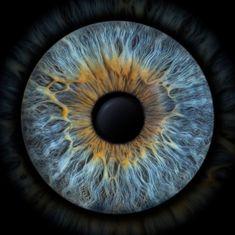 Blue Eye Color, Eye Texture, Realistic Eye Drawing, Architecture Concept Drawings, Photos Of Eyes, Aesthetic Eyes, Music Artwork, Human Eye, Eye Art