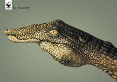 Publicitário explora linguagem corporal para produzir peças animais.