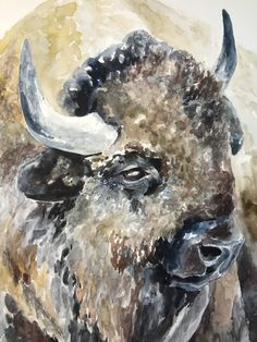 Yellowstone Yearning Big Brown Eyes, Great Plains, Eye For Detail, Yearning, Love Photos, Watercolor Print, Mammals, North America, Moose Art
