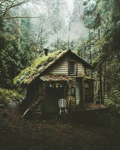 60 Ideas Nature Aesthetic Green Forest For 2019 Dark Green Aesthetic, Nature Aesthetic, Witch Aesthetic, Aesthetic Images, Aesthetic Vintage, Aesthetic Photo, Nature Witch, Slytherin Aesthetic, Cottage In The Woods