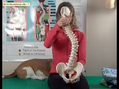 Scolio-Pilates: How to wedge a C-Curve Scoliosis - YouTube