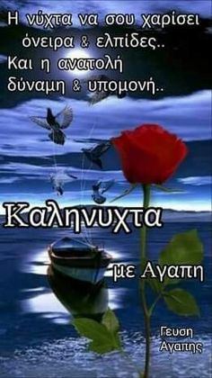 Good Night Flowers, Funny Greek Quotes, Wish