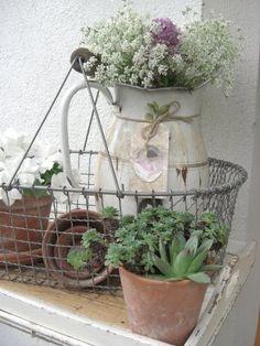 Design e Decoração- Blog de Decoração: Inspiração Jardim