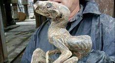 Russie, créature et momie…