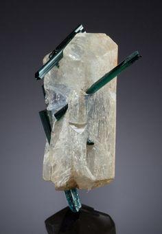 Indicolite Tourmaline in Hydroxyl-Herderite - Brazil