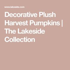 Decorative Plush Harvest Pumpkins The Lakeside Collection