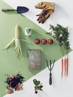 Garden Flatlay #flatlay #garden #green flatlay #design