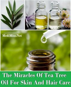 The Miracles Of Tea Tree Oil For Skin And Hair Care