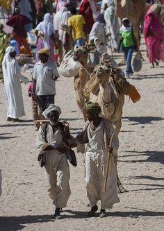 ˚Monday Camel Market, Keren, Eritrea