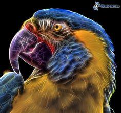 Papagei, fraktale Vogel, Fractal Tiere