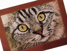 Gallery.ru / Фото #3 - Взгляд кошки - frango