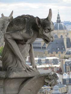 gargoyle -Notre Dame
