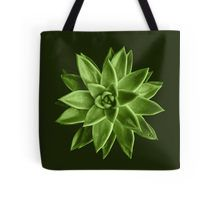 Greenery succulent Echeveria agavoides flower Tote Bag by #PLdesign #greenery #succulent #trendy
