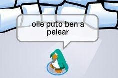 - Penguin Funny - Funny Penguin meme - - The post appeared first on Gag Dad. Meme Pictures, Reaction Pictures, Cute Memes, Dankest Memes, Club Penguin Memes, Funny Penguin, Memes Lindos, Reaction Face, Little Memes