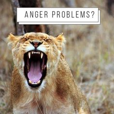 #AngerManagement Explore possible triggers of your anger in order to control your reactions! Read about this topic on my platform