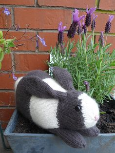 Knit an Easter Bunny!  Free Knit Henry's Rabbit Knit Pattern by Sara Elizabeth Kellner