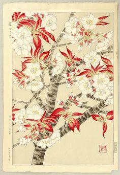 Shodo Kawarazaki 1889-1973 - Cherry Blossoms