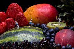 Lilliputian Landscapes  by Judy Robinson-Cox