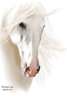 Equine Horse Painting Art Head White by EquineArtShop on Etsy Horse Sketch, Most Beautiful Horses, Horse Drawings, Horse Quotes, Horse Print, White Horses, Beautiful Morning, Equine Art, Cute Creatures