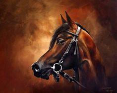Karina Sturm – bei der Ausstellung Faszination Galopper   Chimeryk, Polnischer Araber, Racehorse (c) Öl auf Leinwand von Karina Sturm