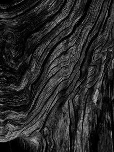 | MODERN + BLACK |