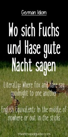 German Idioms: Wo sich Fuchs-und Hase gute Nacht sagen.   Literally: Where fox and hare say goodnight to one another.   English Equivalent: In the middle of nowhere or out in the sticks.