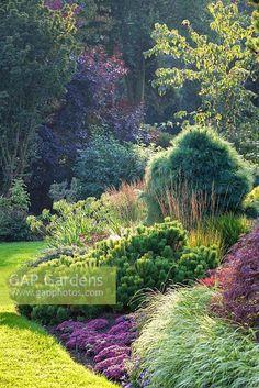 Enjoy collection backyard styles and let me find your thoughts about this garden design ideas. Large Backyard Landscaping, Landscaping Ideas, Backyard Ideas, Amazing Gardens, Beautiful Gardens, Italian Garden, Garden Shrubs, Dream Garden, Rain Garden