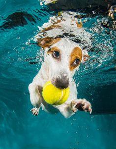 ....nicht ohne meinen Ball