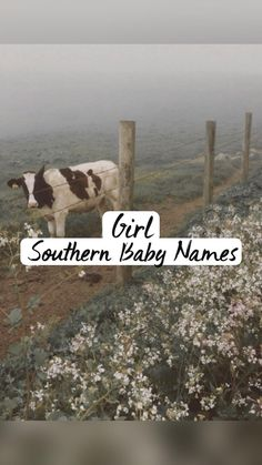 Southern Baby Girl Names, Country Girl Names, Cute Country Couples, Country Girl Quotes, Pretty Names, Cute Baby Names, Unique Baby Names, Kid Names, Family Picture Poses