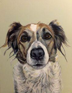 Izzie, acrylic on canvas, bespoke dog portrait from Barking Madden dog portraits