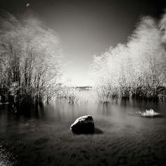 Infrared by Tomasz Kaluzny