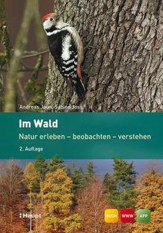 Jaun, Andreas / Joss, Sabine «Im Wald. Natur erleben - beobachten - verstehen» | 978-3-258-07900-4 | www.haupt.ch
