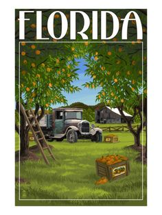 Florida - Orange Grove with Truck Prints by Lantern Press at AllPosters.com