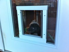 Here Are A Few Doggy Door Options For Your Best Friend Of A Pet.
