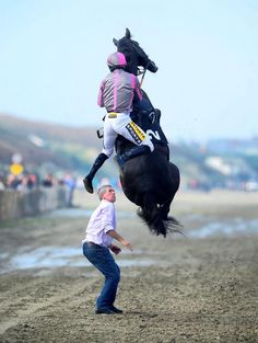Image of the day: Drama going to the start as Arbritrageur flies into the air as jockey Johnny King mounts him on the course watched by groom Aidan Wall. Thankfully both horse and rider were fine and went on to finish seventh in the 4.45 at Laytown today. Photo credit: HEALY RACING