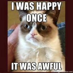 Grumpy Cat luuvvv