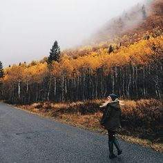 Shared by smile. Find images and videos about autumn, fall and nature on We Heart It - the app to get lost in what you love. Autumn Aesthetic, Just Dream, All Nature, Autumn Nature, To Infinity And Beyond, Adventure Is Out There, The Great Outdoors, Adventure Travel, Scenery