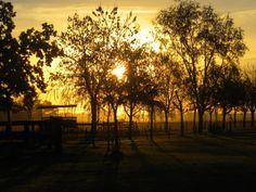 Argentina Sunset. Estancia.